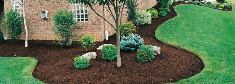 Natural Color Mulch
